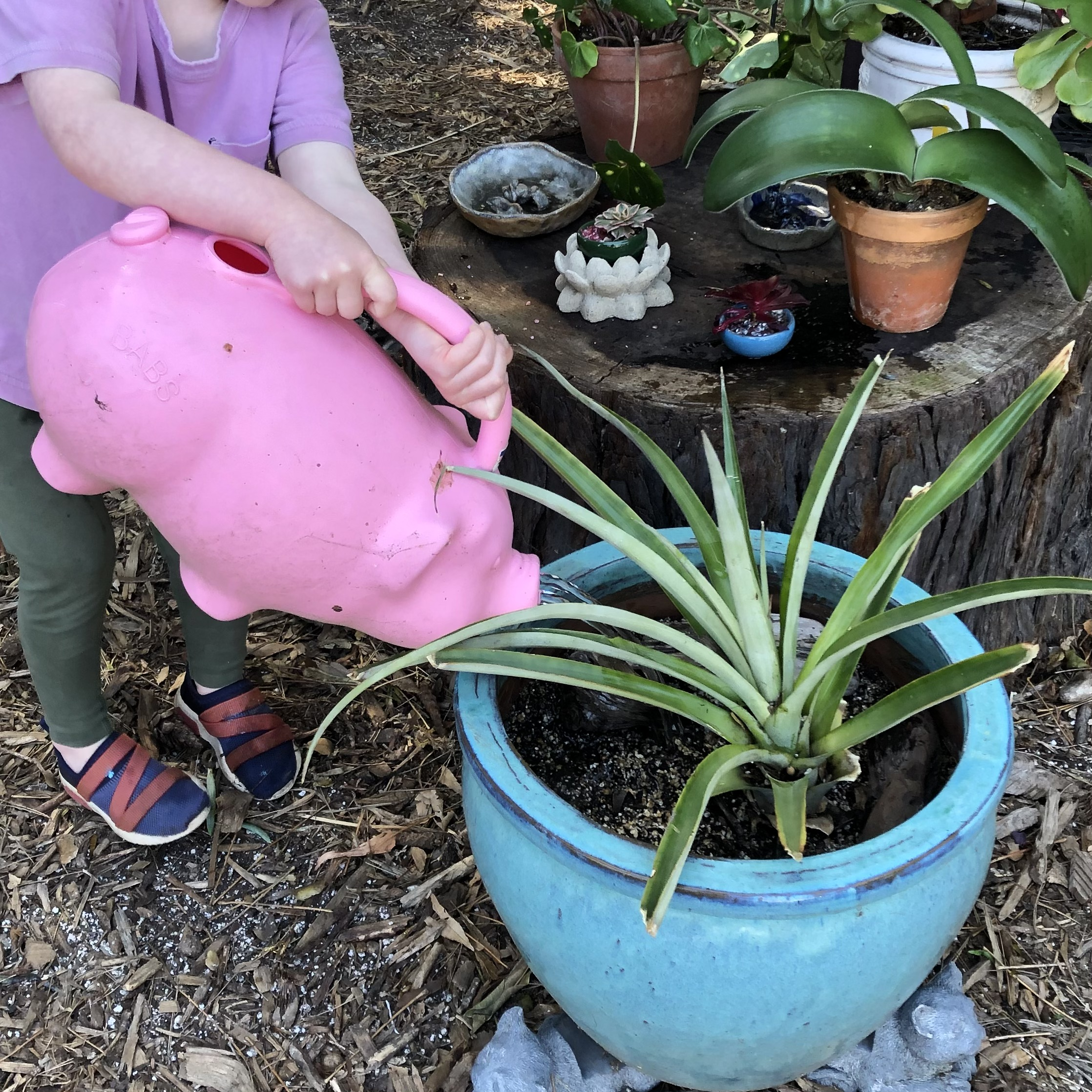Parent-Child Gardening Club